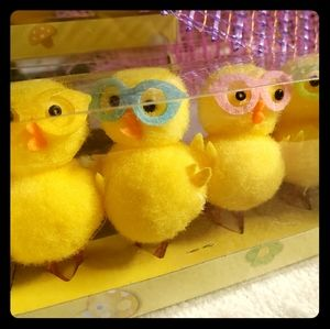 🐣🐣 Nerdy chicks 💛 Easter chickens w/glasses